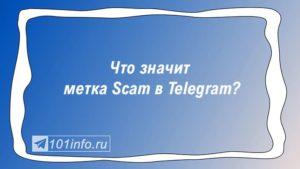 Read more about the article Что значит метка Scam в телеграмме?